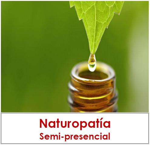 curso naturopatia